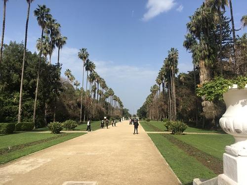 رحلتي الى الجزائر  ...!! تصويري 1491563574051.jpg