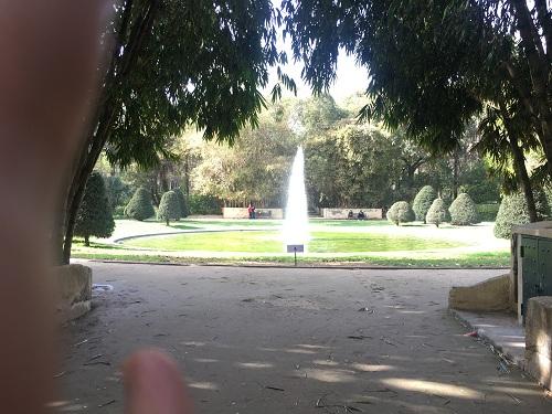رحلتي الى الجزائر  ...!! تصويري 1491563805651.jpg